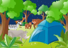 Scène avec tente et animaux sauvages en forêt
