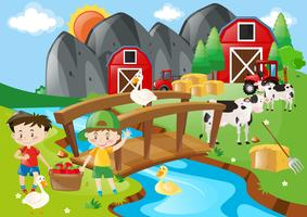 Boys and animals in the farmyard