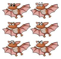 Bat with different facial expressions