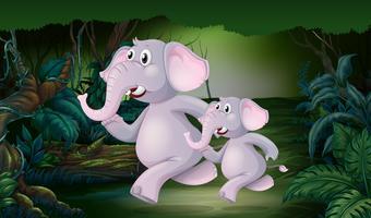 Elefant som kör i djungeln