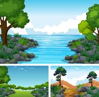 Three scenes with lake and forest