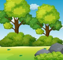 Uno sfondo verde della natura