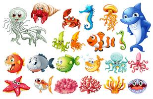 Different kinds of sea animals