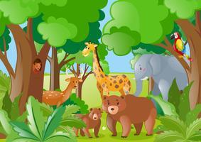 Animais selvagens na floresta