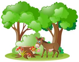 Donkey living in the forest vector