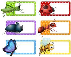 Étiquettes carrées et de nombreux insectes