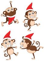 Christmas theme with monkeys wearing christmas hat