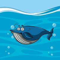 Blue whale with dizzy face in the sea