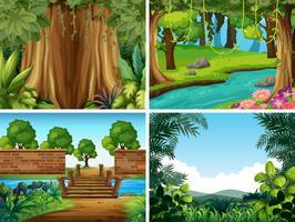 Un conjunto de paisajes de la naturaleza.