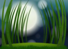 Een wazig bamboe sjabloon