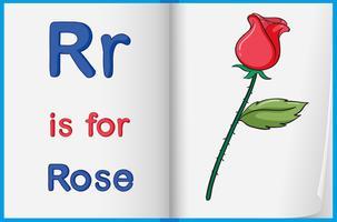 En bild av en ros i en bok