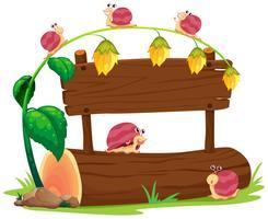 Snail on wooden board