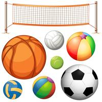 Set of different balls and net