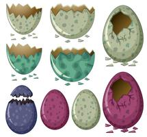 Different patterns of dinosaur eggs