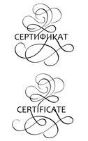 la parola del certificato con flourish su fondo bianco. Illustrazione EPS10 di vettore dell'iscrizione di calligrafia