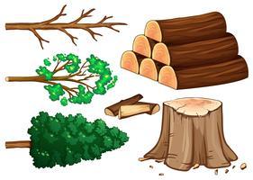 Baum und Brennholz auf weißem Hintergrund