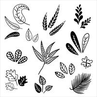 Set of vintage style leaves.