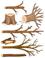 Firewood and stump trees