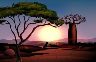 Un atardecer en el desierto con dos animales.