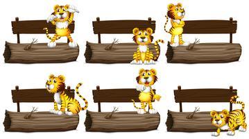 Houten borden met tijgers