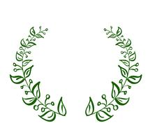 green wreath frame of leaves on white background. Vector calligraphy illustration EPS10