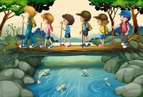 Crianças, hiking, em, a, madeiras