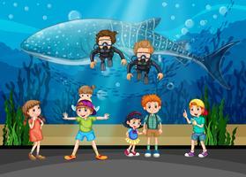 Niños mirando ballenas y buzos en acuario.
