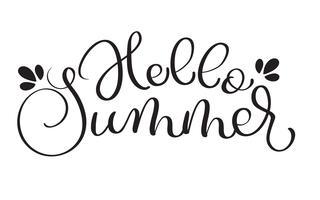 Hallo zomer tekst op witte achtergrond. Hand getrokken kalligrafie belettering vectorillustratie EPS10