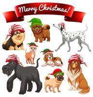 Jultema med hundar i elva hattar