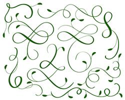 green set of vintage flourish decorative art calligraphy whorls for design. Vector illustration EPS10