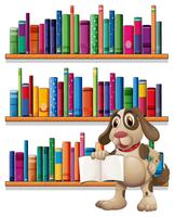 A dog holding a book in front of the bookshelves vector