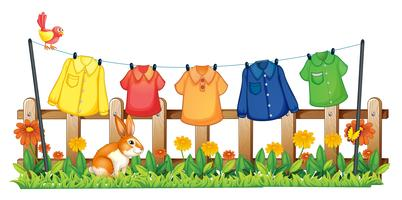Un jardín con ropas colgantes y un conejito.