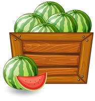 Watermelon on wooden banner