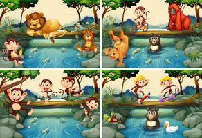 Cuatro escenas con animales salvajes en el río.