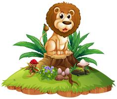 Lion on tree stump isolated