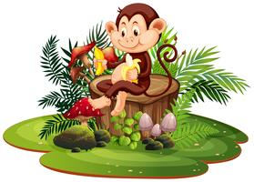 Isolated monkey in nature vector