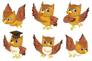 Owl series vector