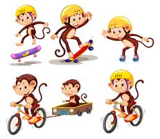 Set of monkey character with activity