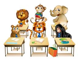 Animals in classroom