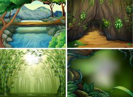 Cuatro escenas de bosque diferentes