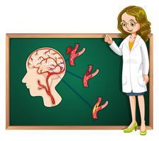Doutor e cérebro humano a bordo