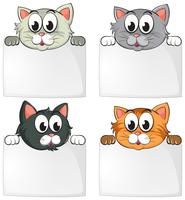 Cute cats with blank papers