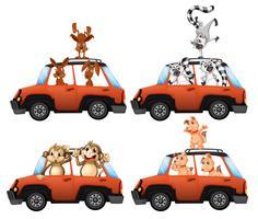 Un conjunto de animales en coche. vector