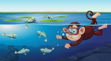 Mono nadando bajo el agua escena