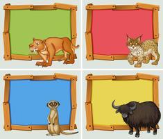 Diseño de cuadros con animales salvajes.
