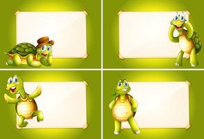 Vier Bilder mit grünen Schildkröten