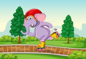 Elephant playing roller skate in the park