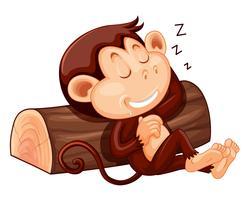 Um macaco dormindo no fundo branco