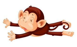 A monkey playdead on white background vector