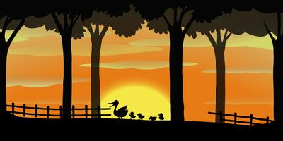 Silhouette background with ducks on the farm vector